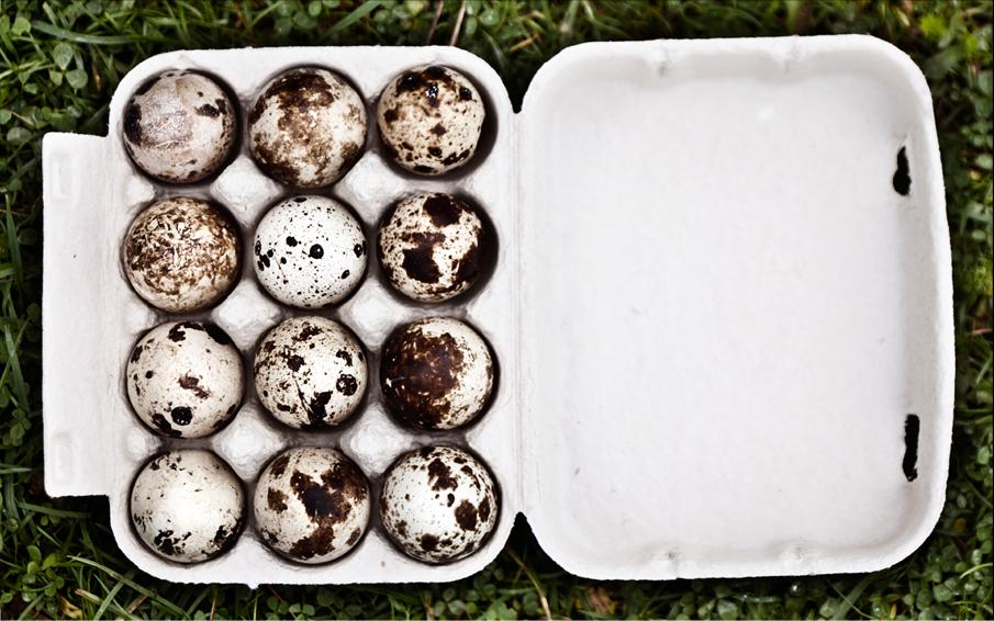 health-eggs